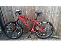mountain bike Specialized hardrock 17.5 inch