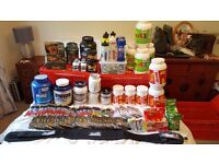 USN, Grenade, PhD, High-5, SIS, Protein, Pre-Workout, Recovery, Job Lot, must go!!!!!!
