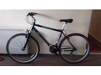 Barracuda expedition 200 bike