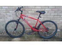 Apollo Feud Mountain Bike - 17 inch frame