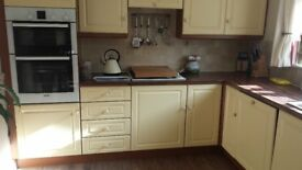 kitchen cabinets wall and floor mounted no appliances