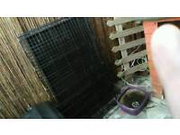 Large dog crate will fit 2dogs comfortably