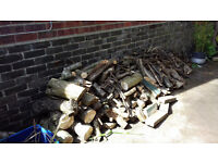 wood logs burning fire chiminea