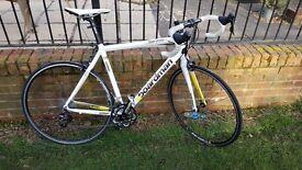 Boardman Comp Road Bike (57 cm Large Frame) Carbon Forks