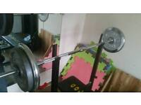 Various gym equipment. Weights bars and squat rack