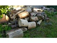 Leylandii Logs for sale.