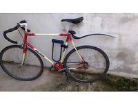"""Raleigh fixie - 22"""" fixed gear bike"""