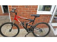Adults bike brand new never been used.