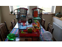 Awesome Hamster Cage (Harrison's Westminster Palacee) with lots of accessories