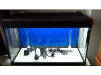 125 ltre led lighting fluval roma aquarium and cabinate