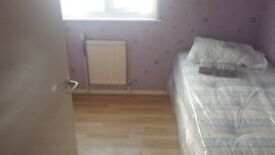 Large single room in a quiet house, close to Chadwell Heath Station