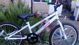 Appollo envy girls bicycle
