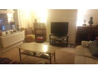 Room available in friendly BS3 house share - North Street