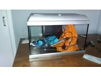 great stater fish tank 2ft long and 1ft wide