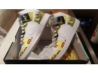 Brand new NIke dunk premium SB still boxed
