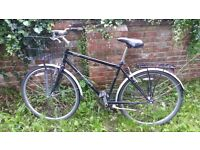 Urgent Sell: Large Single Speed bicycle with a basket