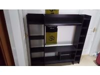 TV and storage mount