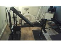Pro fitness weight bench & fly