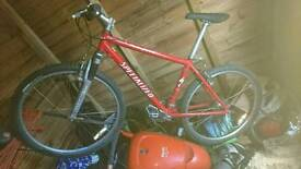 ROCKHOPPER Specialized