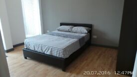 Delightful Newly Built 1/2 Bedroom Apartment Located in Whitechapel with Large Balcony