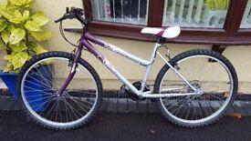 Ideal XMAS GIFT - New Mountain Bike