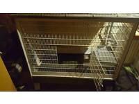 Ferret/rat cage