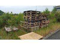 Free Pallets / Firewood Collection Only