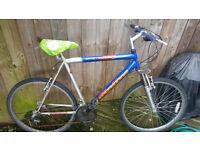 men bike in good condition