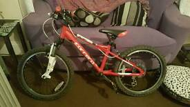 Boys carrera blast mountain bike
