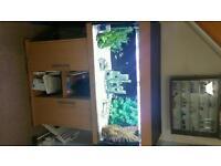 Tropical fish tank aquarium . Complete set up with fish