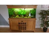 aquarium set for sale