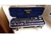 Flute + hard case