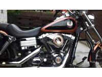 Harley-Davidson,Dyna Wide Glide 105th Anniversary