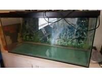 Vivarium snake tank