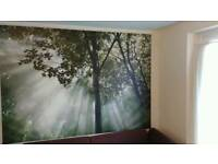 Large Ikea Canvas Tree Framed Picture 2m x 1. 4m. (Woodland, forest, trees)