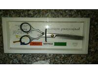 Henbor superior thinning scissors golden series
