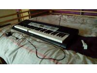 Casio CTK-1550 | 61-Key Electronic Keyboard + Adapter & Music Rest | One Broken Key
