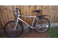 Dawes garatoga mountain bike