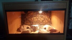 ND Aquatics 2ft Vivarium for sale ***Price reduced for quick sale