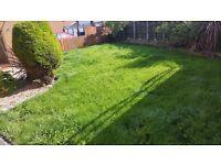 RJB GARDEN MAINTENANCE / Grass & Hedge cutting