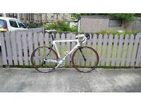 Medium/Large road bike ***********PRICE REDUCED**********