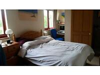 Large double room with ensuite for rent