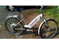 raleigh electric bike
