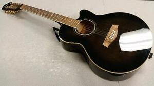 Ibanez 12 String Acoustic Guitar
