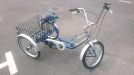 Three wheeled bike (trike)
