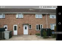 3 bedroom house in Fitties Lane, North Cotes, DN36 (3 bed)