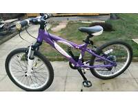 "Carrera luna girls bike 20"" wheels"