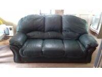 free green sofa