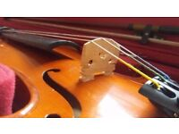 Lovely 3/4 Stentor violin student model, dominant strings, new case, new bow, absolute steel at £75!