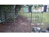 Decorative Wrought Iron Railing & Gate